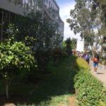 I Concurso de Jardines en las Facultades y Dependencias de la Universidad