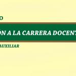 Categoría Auxiliar-Convocatoria  y Reglamento de Ingreso a la Carrera Docente de la UNMSM